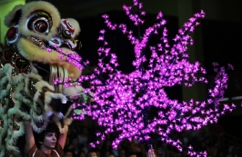 Campionato Mondiale di Lion Dance, Hong Kong 2012